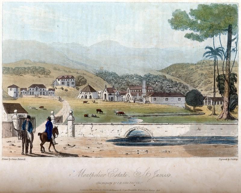 Montpelier Estate