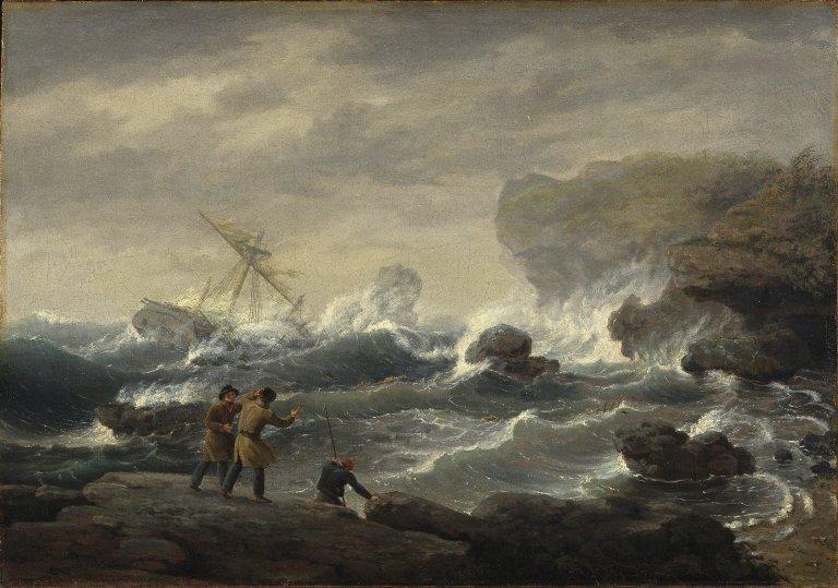 Shipwreck Birch