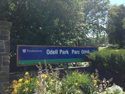 Rookwood Park