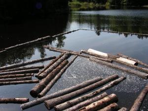log drive Kings Landing