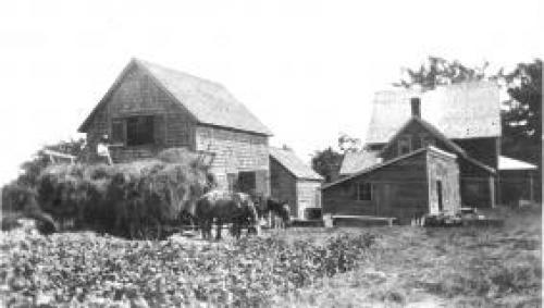 Otty Farm